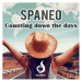 Spaneo - Counting Down The Days (Radio Edit)