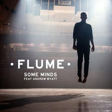 Flume - Some Minds (Instant Party Rework)