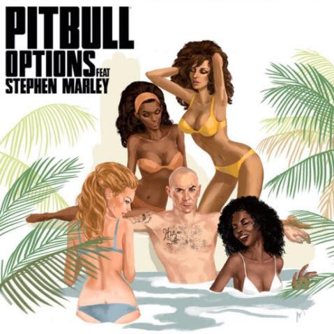 Pitbull feat. Stephen Marley - Options (Chuckie Remix)