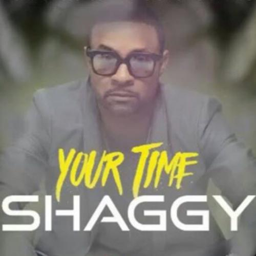 Shaggy - Your Time